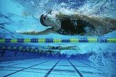 Vrouwelijke zwemmers zwemmen — Stockfoto