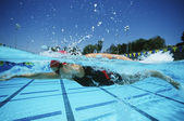 Swimmer Practicing Before A Competition — Stock Photo