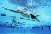 Swimmers Swimming Together In A Line During Race — Photo