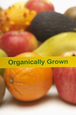 Variety Of Organically Grown Fruits — Stock Photo
