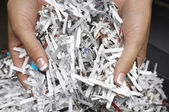 Female Hands With Shredded Papers — Stock Photo