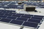 Array Of Solar Panels — Stock Photo