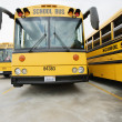 School Buses — Stock Photo #21971339
