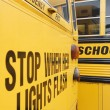 Stop When Red Lights Flash on School Bus — Stock Photo