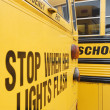 Stock Photo: Stop When Red Lights Flash on School Bus