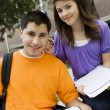 Teenage Couple Studying - Stock Photo
