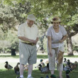 Senior Couple Feeding Ducks — Stock Photo