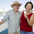 Cheerful Senior Caucasian Couple Holding Ice-creams — Foto de Stock