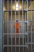 Criminal In Prison Cell — Photo