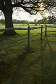 Green Field With Fence — Stock Photo
