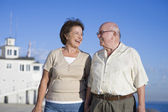 Romantic Senior Couple Looking At Each Other — Stock Photo