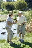 Senior Couple Standing By Duckpond — Stock Photo