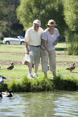 Happy Senior Couple Feeding Ducks — Stock Photo