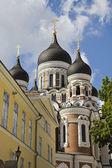 Catedral de alexander nevsky — Foto de Stock