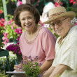 Senior Couple sitting among flowers — Stock Photo #33797625