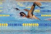 Schwimmer racing — Stockfoto