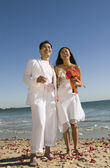 Newlyweds Standing on Beach — Stock Photo