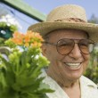Senior Man in plant nursery — Foto Stock