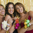 Girls Showing Prom Corsages — Stock Photo #33803707