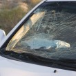 Smashed car windshield — 图库照片