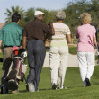 Senior golfers walking — Stock Photo #33805663