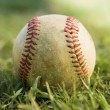 Baseball on grass — Stock Photo