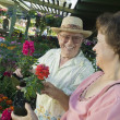 Senior Couple Shopping for flowers — Stock Photo #33808205
