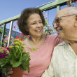 Senior Couple sitting among flowers — Stock Photo