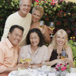 Friends toasting at dining table — Foto Stock #33808945