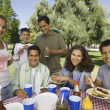 Family Picnic  — Foto de Stock