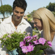 Couple Shopping for flowers — Stock Photo