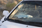 Smashed car windshield — Stock Photo