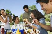 Family Gathered Around Picnic Table — Stock Photo