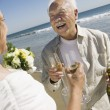 Senior Newlyweds Sharing a Toast — Foto de Stock