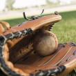 Baseball Glove and Ball — Stock Photo #33810505