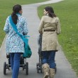 Mothers pushing strollers in park — Stock Photo #33826145