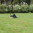 Lawn Mower — Foto de stock #33820139