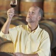 Man inspecting quality of wine — Stock Photo #33822261