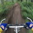 Stock Photo: Bicyclist Manoeuvring through forest