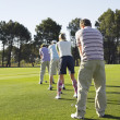 Golfers standing in row — Stock Photo #33822821