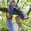Stock Photo: Kids Climbing Tree