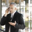Businessman gesturing while using cell phone — Stock Photo #33824271