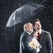 Businessmen Under Umbrella — Stock Photo #33829373
