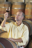 Man inspecting quality of wine — Stock Photo