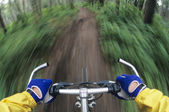 Bicyclist Manoeuvring through forest — Stockfoto