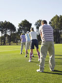 Golfers standing in row — Stock Photo