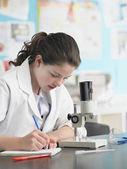 Genç kız mikroskop kullanarak — Stok fotoğraf
