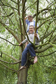 Two boys sitting in tree — Stock Photo