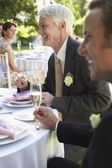 Wedding Party in Garden — Stock Photo