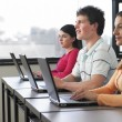 College Students Using Laptops — Stock Photo